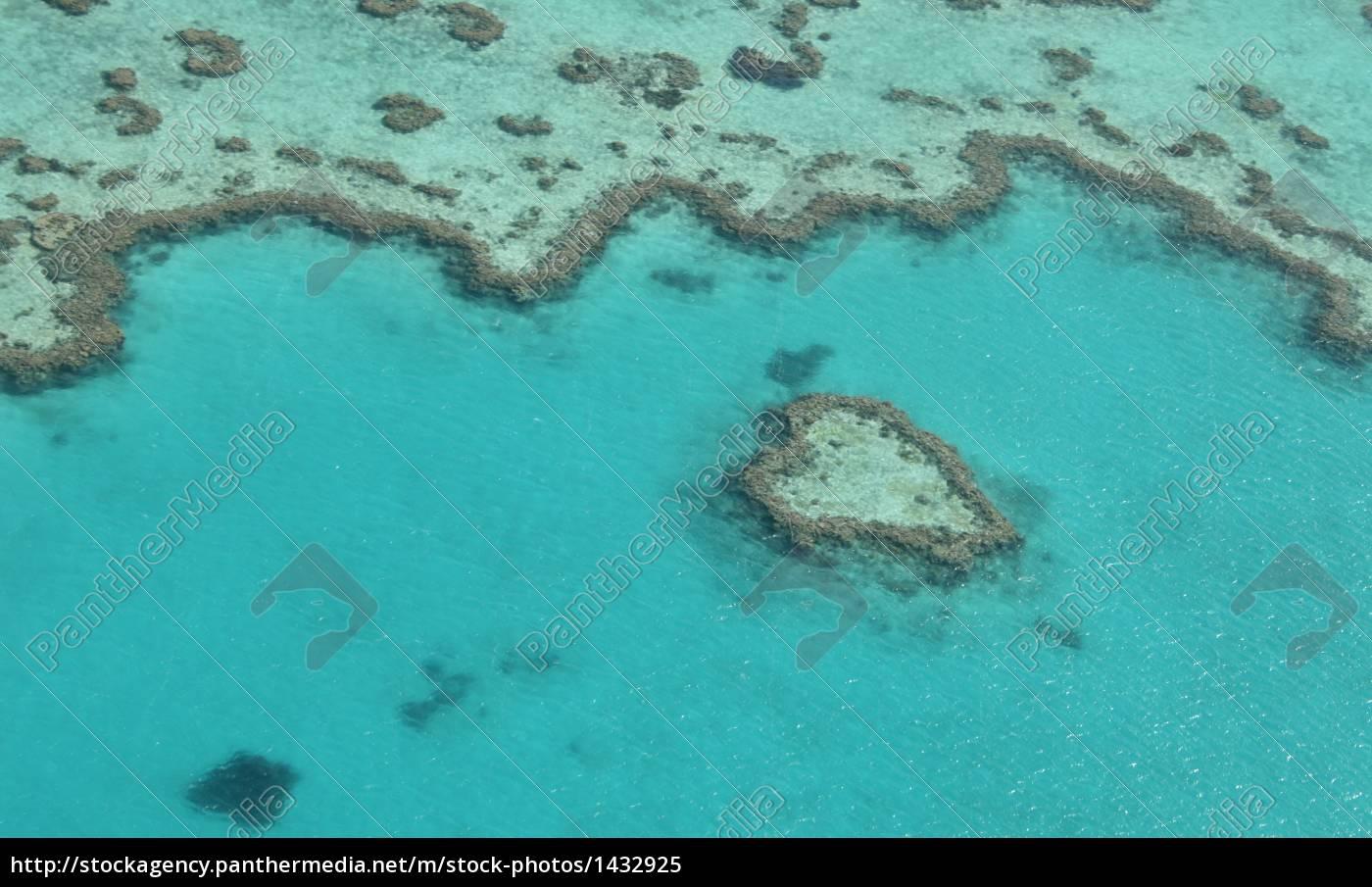heart, in, the, sea - 1432925
