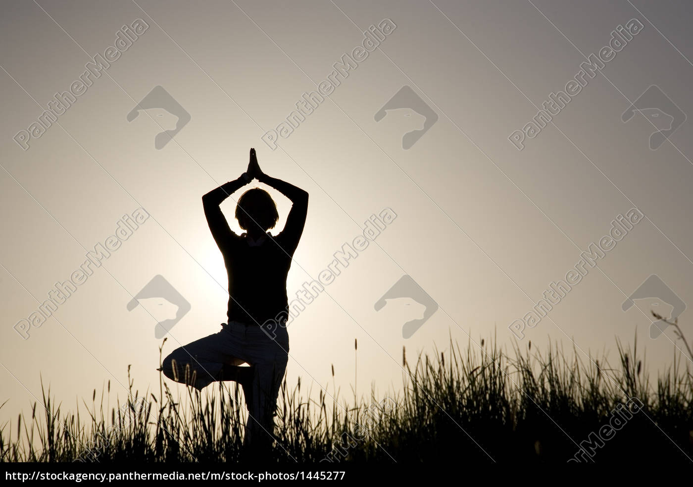 woman, doing, yoga, exercise, -, the - 1445277