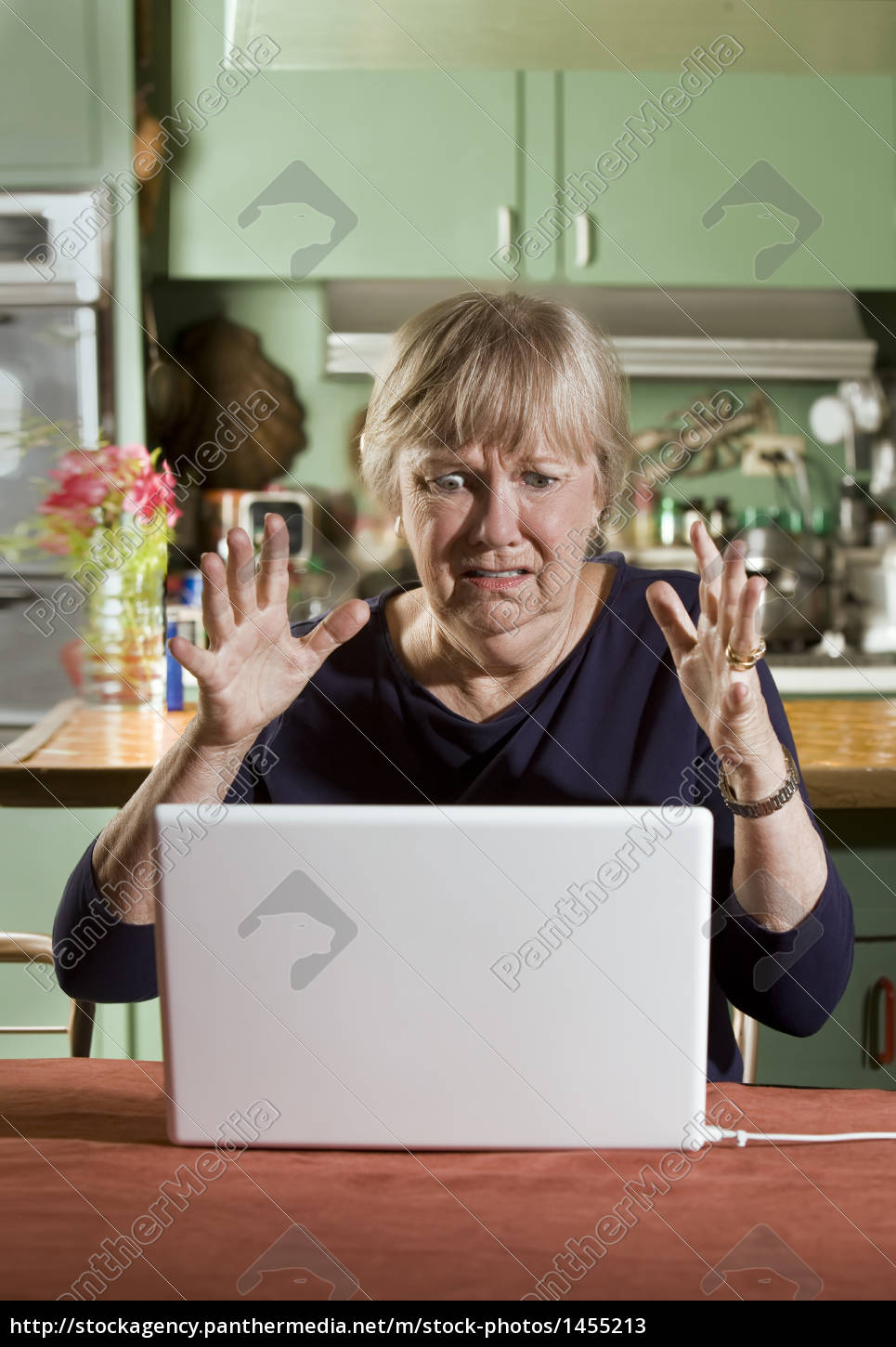 shocked, senior, woman, with, a, laptop - 1455213