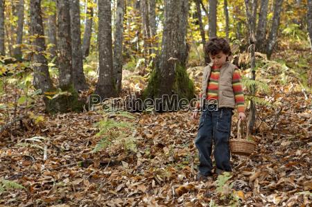 precious child picking mushrooms