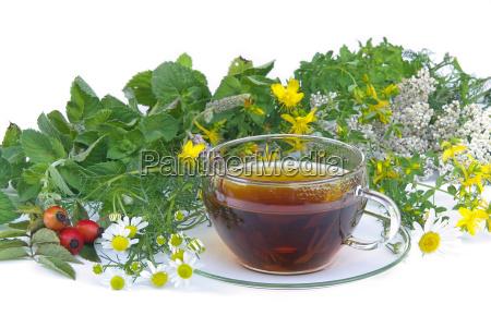 herbal tea tea herbal 01