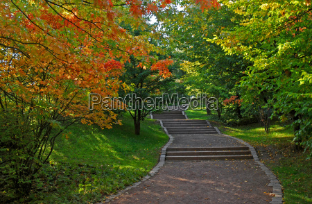 stairs in the park