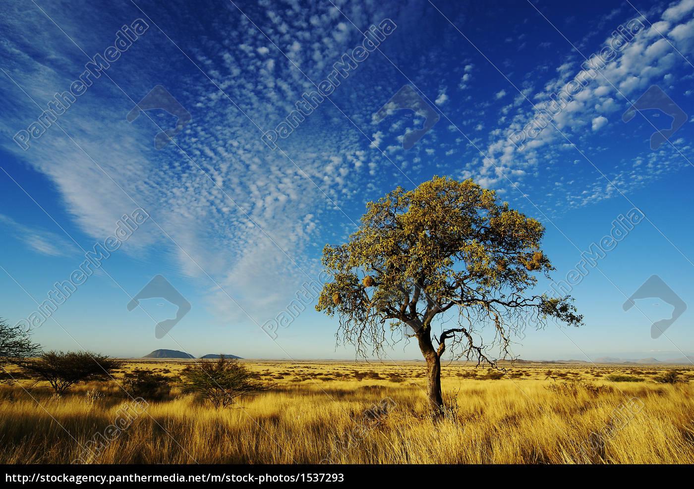 sky, over, namibia - 1537293