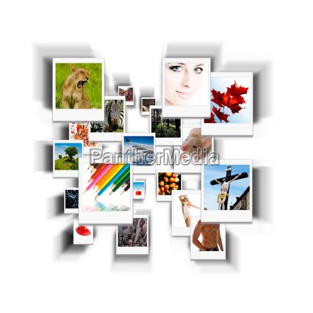polaroid, -, collection - 1558589