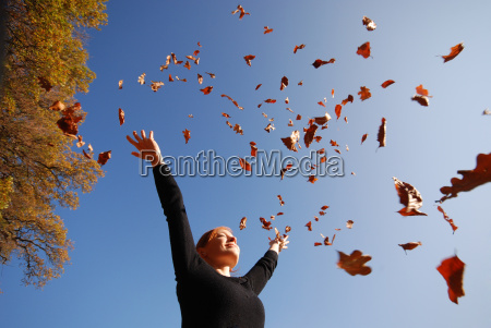 autumn - 1573305