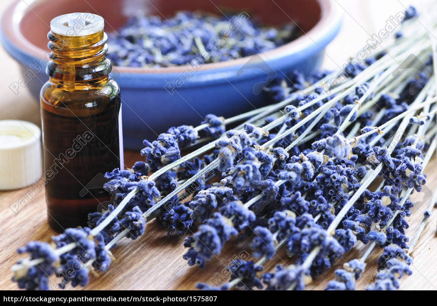 lavender, herb, and, essential, oil - 1575807