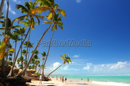 tropical, beach - 1577403