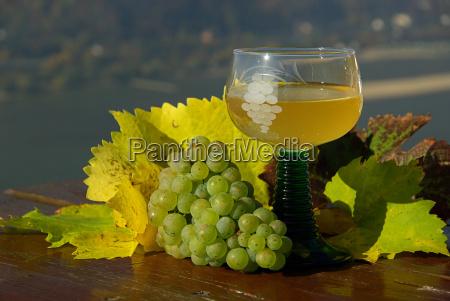 federweißer, -, new, wine, 11 - 1596341