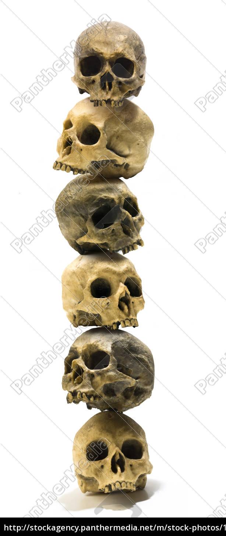 human, skulls, stack - 1609325