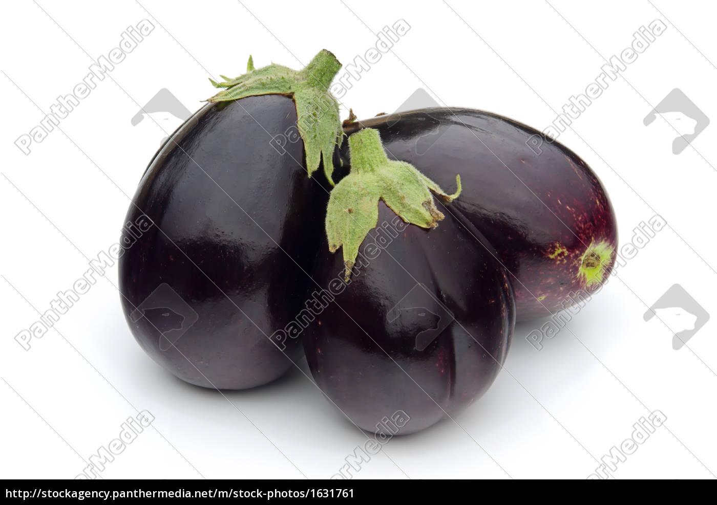aubergine - 1631761