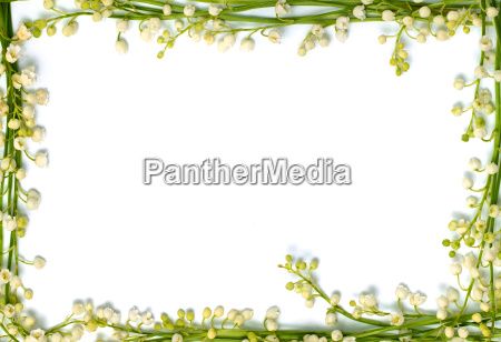 lily of the valley flower frame