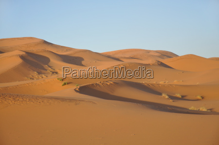 sand dunes in the sahara morocco