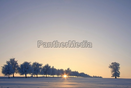 cold, winter, evening - 1685983