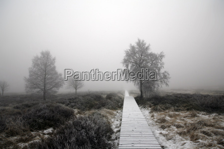 winter, in, the, high, fens - 1687359