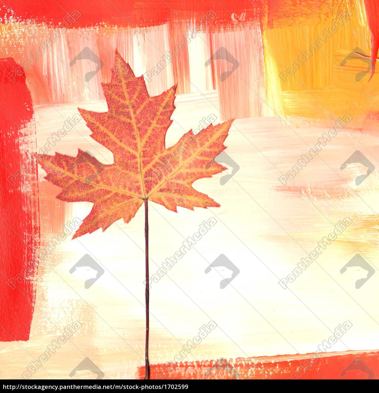 maple, collage - 1702599