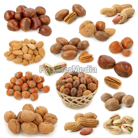 nuts collection isolated on white