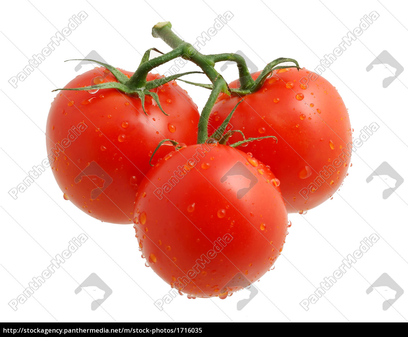 three, tomatos - 1716035