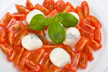 tomaten mozzarella und basilikum