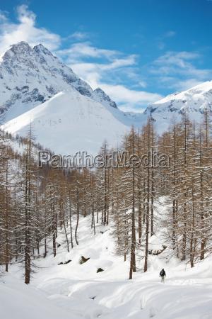 mountain winter landscape gressoney