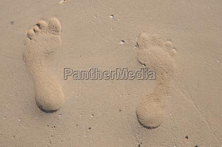 footprints, on, the, beach - 1744901