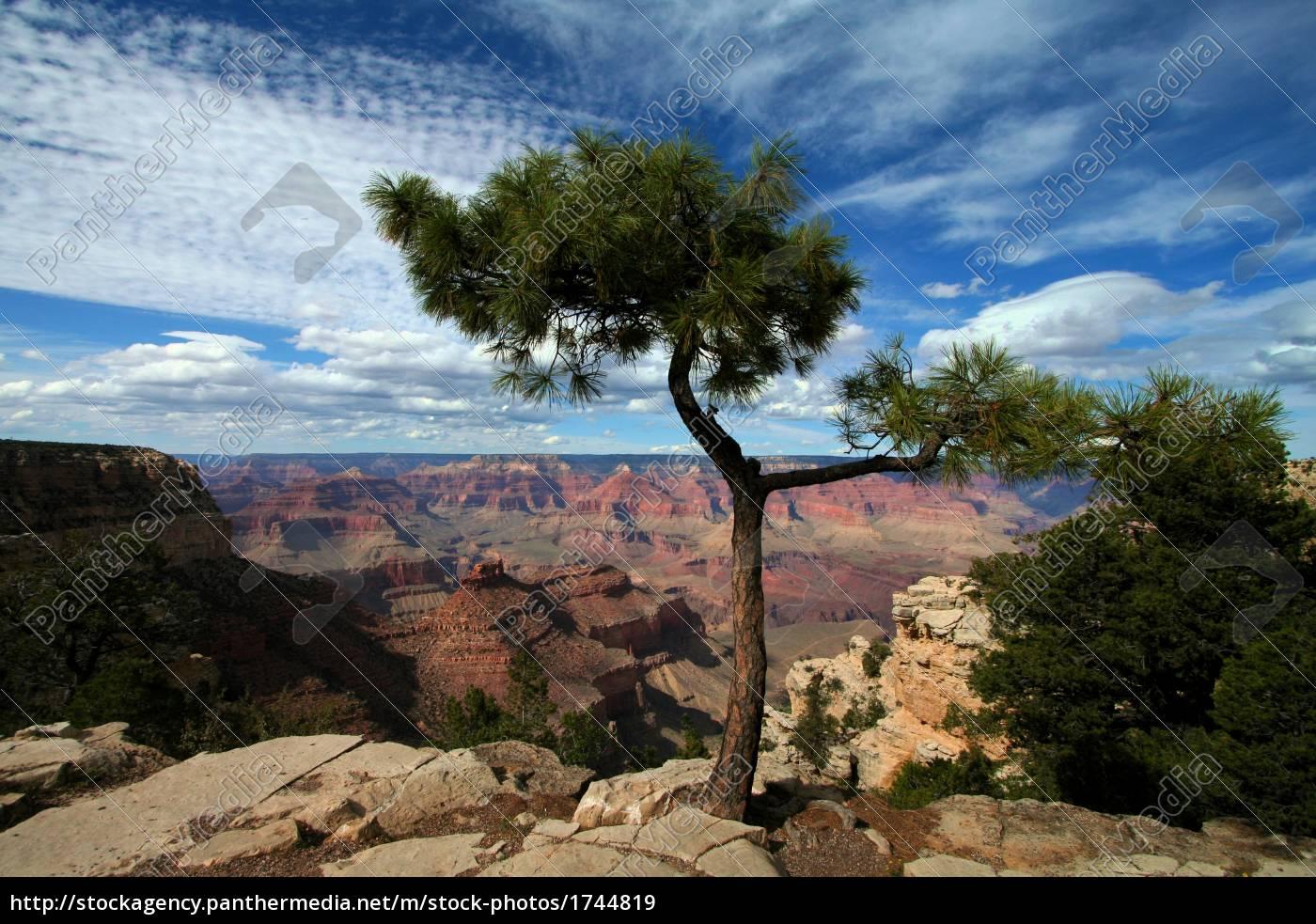 grand, canyon, 5-2007 - 1744819