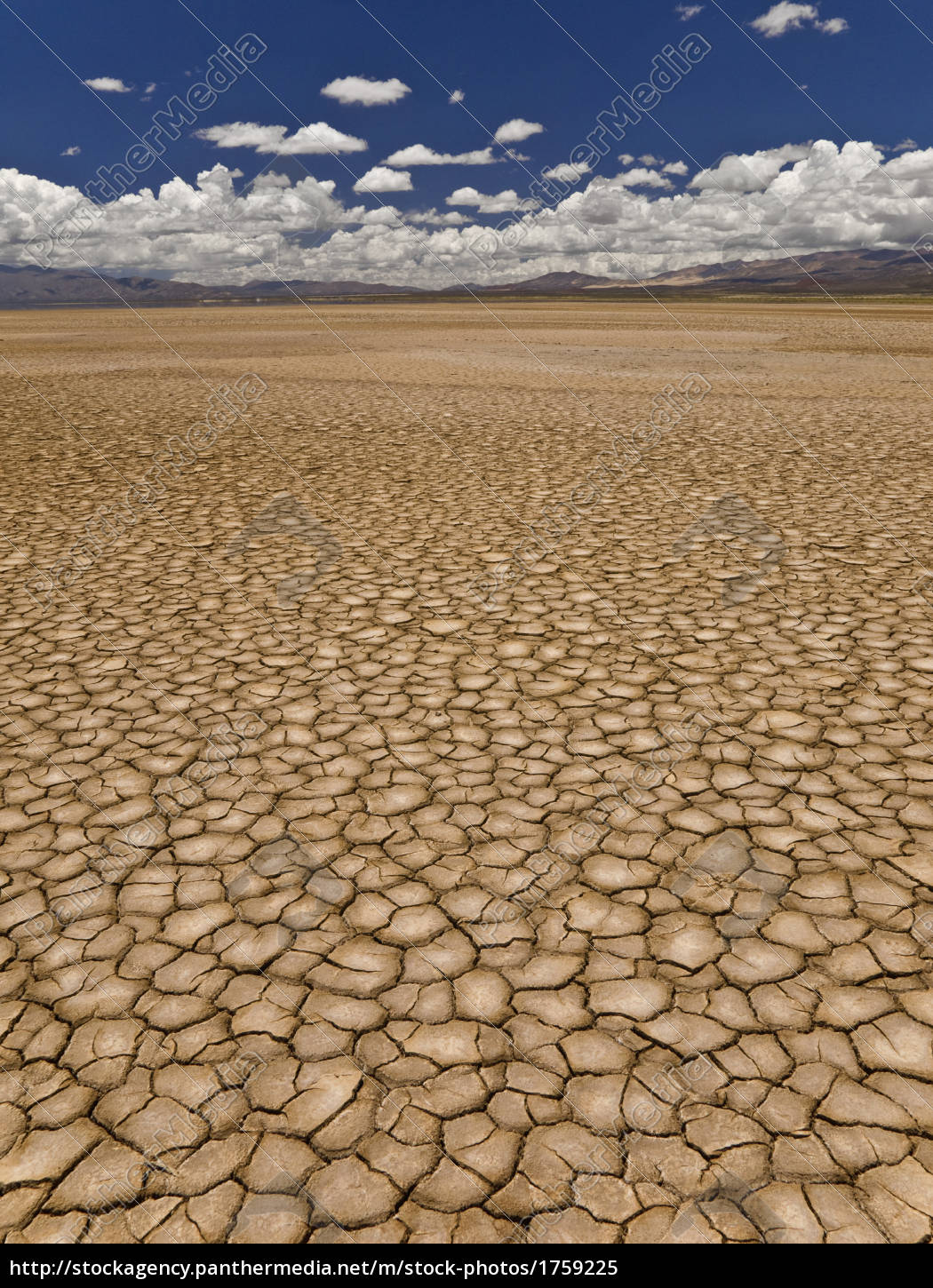 drought - 1759225