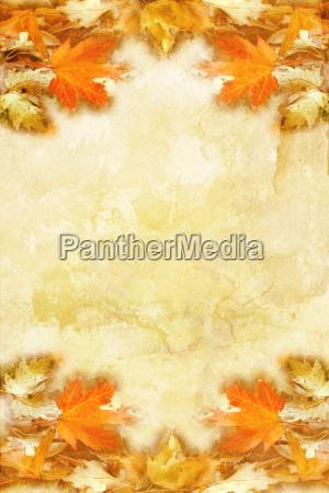 blad blade farverig staerkt farvet kulort