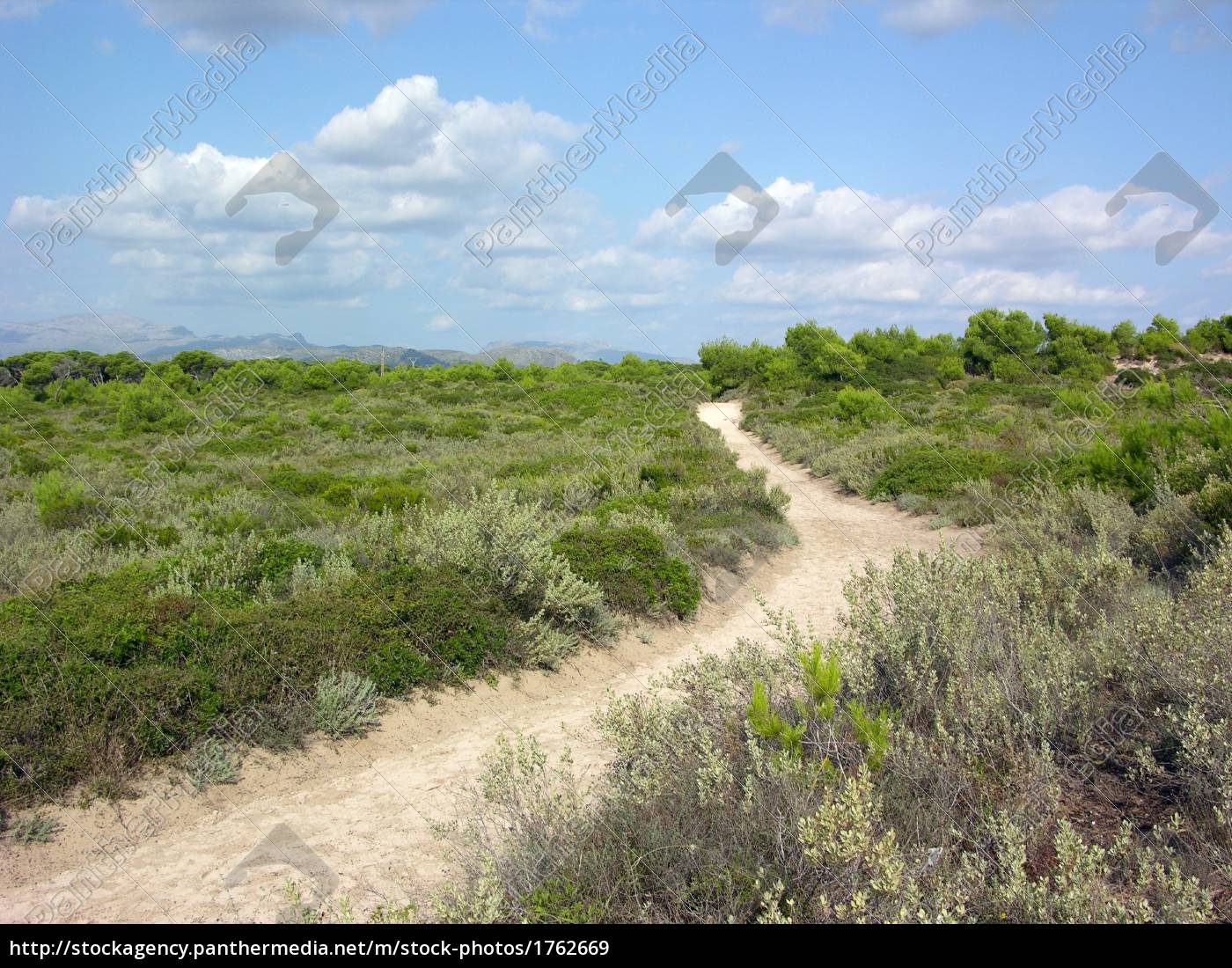 alcudia, nature, reserve - 1762669