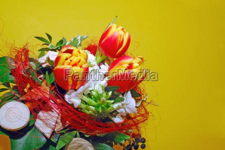 flowers, greet - 1768431