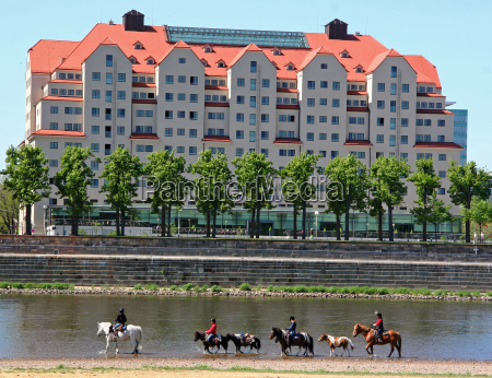 riding on the elbe