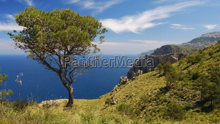 view of the coastline mallorca
