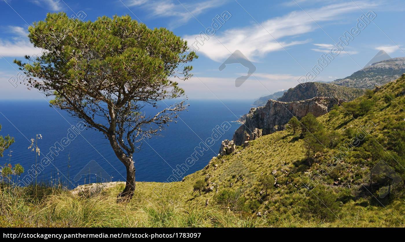 view, of, the, coastline, mallorca - 1783097