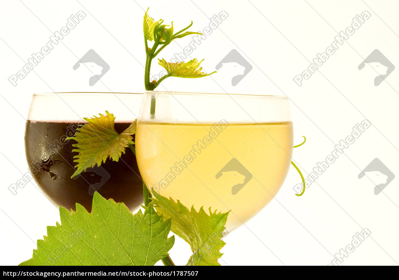 red, and, white, glass, wine - 1787507