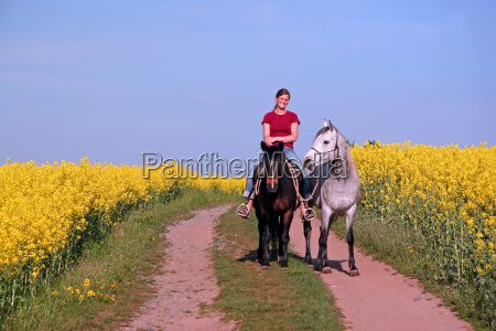woman ride coleseed horse horses spring