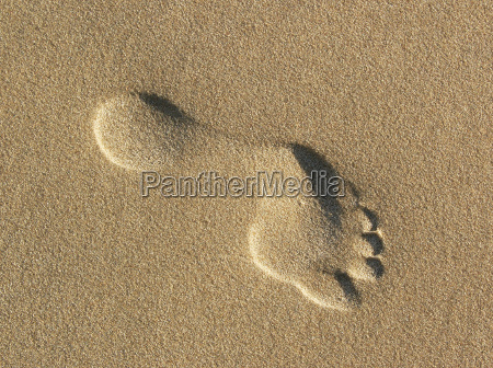 footprints, in, the, sand - 1864679