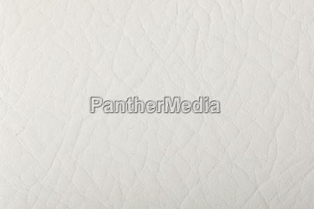 background white leather