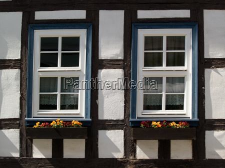 two windows with flower boxes