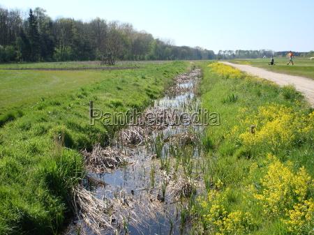 estupro primavera golfe rio agua mecklenburgvorpommern