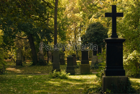 cemetery with crosses