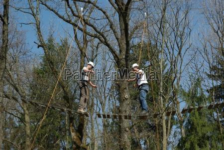 balance act jungle bridge