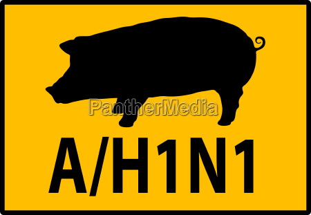 h1n1 swine flu warning