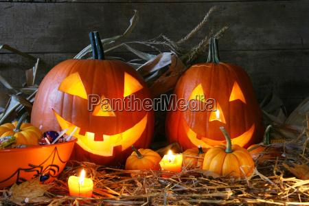 scarved jack o lanterns
