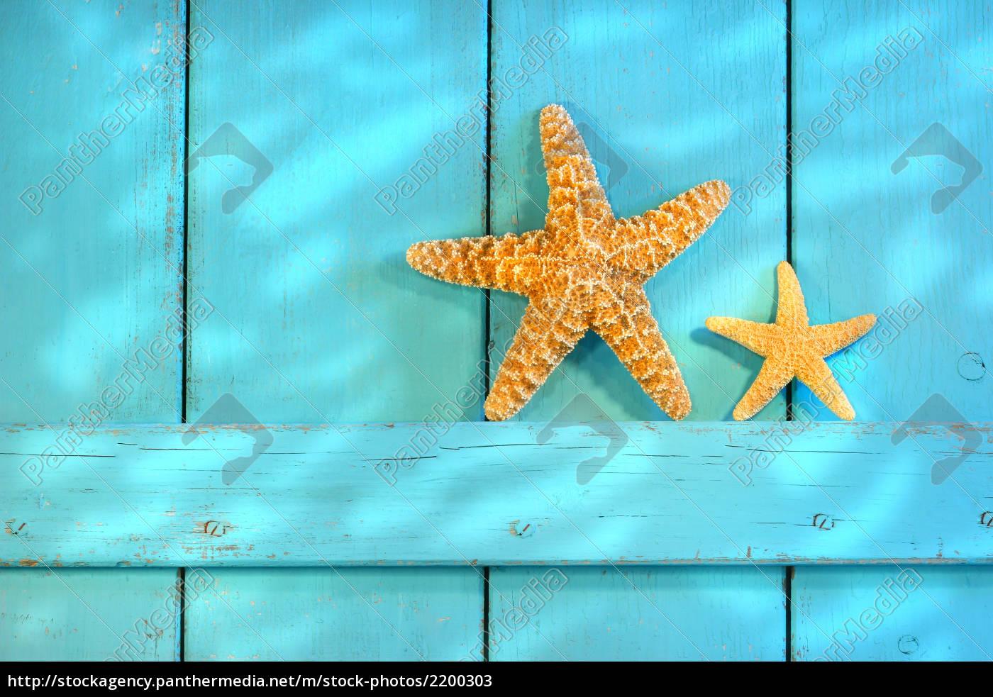 starfish, on, an, old, rustic, door - 2200303