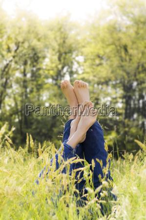 meadow - 2201873