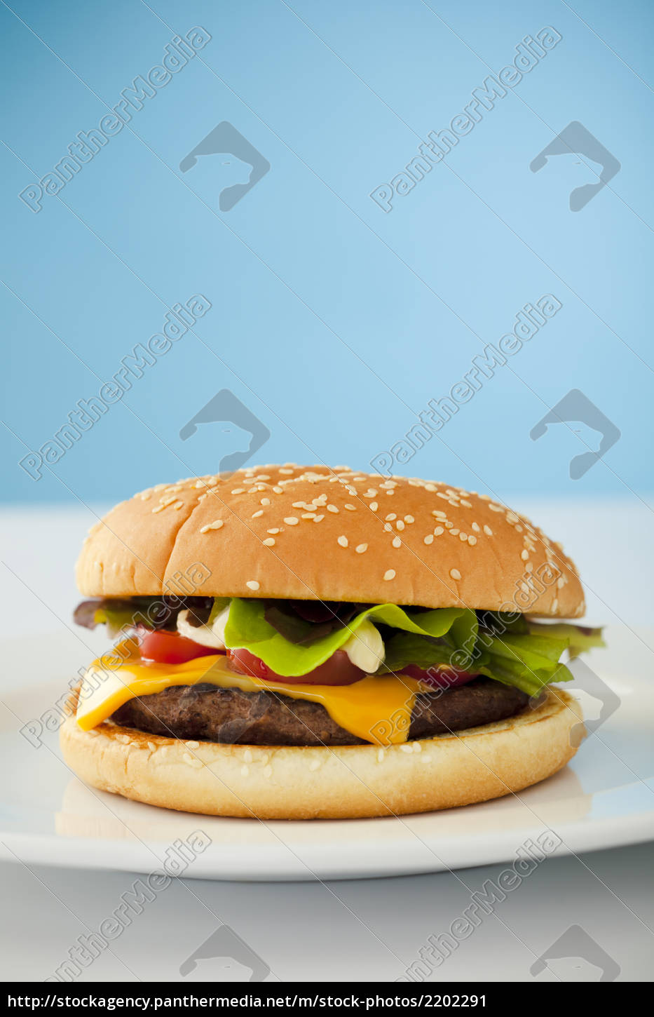cheese, burger - 2202291