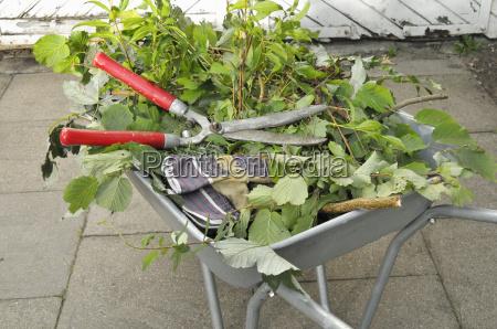 gardening - 2222491