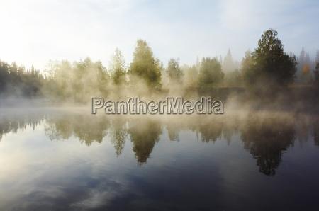 morning, mist - 2262893