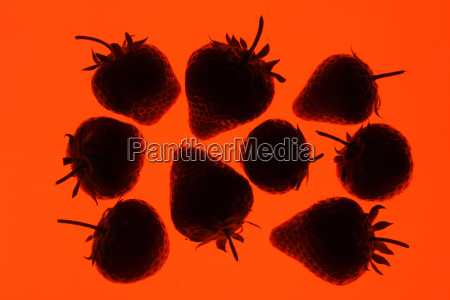 strawberries silhouetted on an orange background