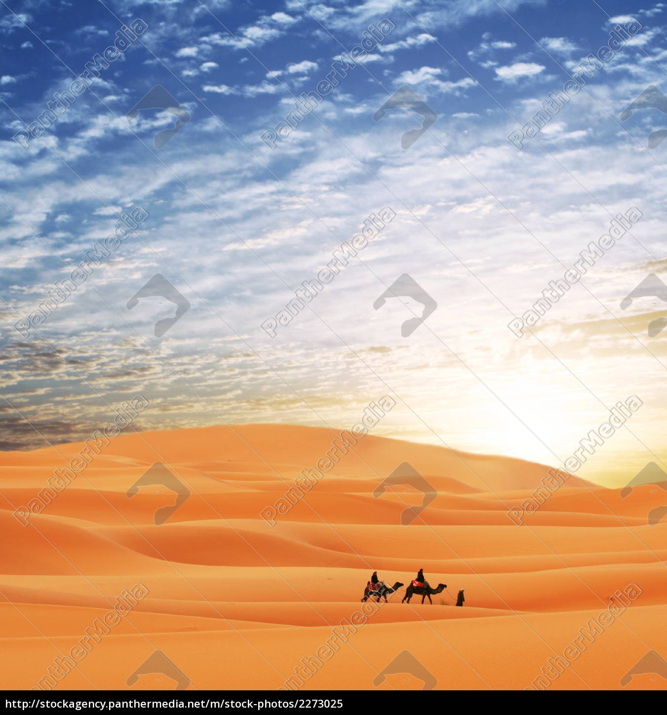 caravan, in, desert - 2273025
