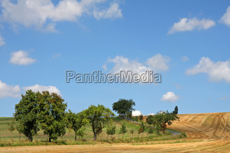 schlengelweg by fields